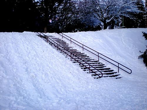 Delbrook Park Down Rail